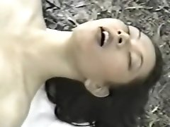 Thai Nong Porn