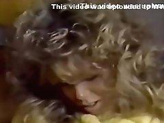 Samurai Retro Sweethearts - Blondie Bee - Yellow Sweater