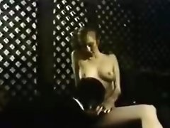 Fabulous Anal Classic Video With Hershel Savage And Michael Morrison