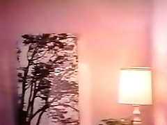 Amazing Retro XXX Video From The Golden Age