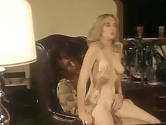The Erotic World Of Sunny Day